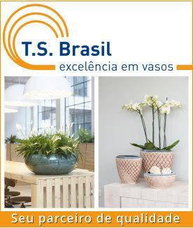 Banner TS Brasil