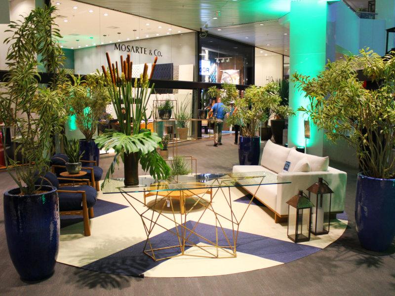 D&D Garden Design reúne ícones do paisagismo nacional