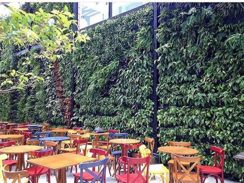 Verde e gastronomia, algo que a cada dia dá mais certo