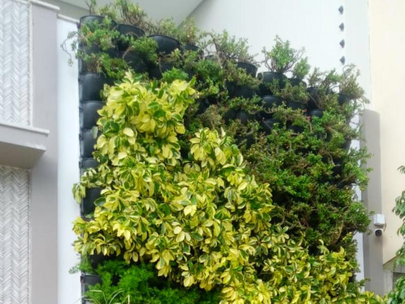 Husqvarna patrocina curso voltado para jardins verticais e telhados verdes em Recife