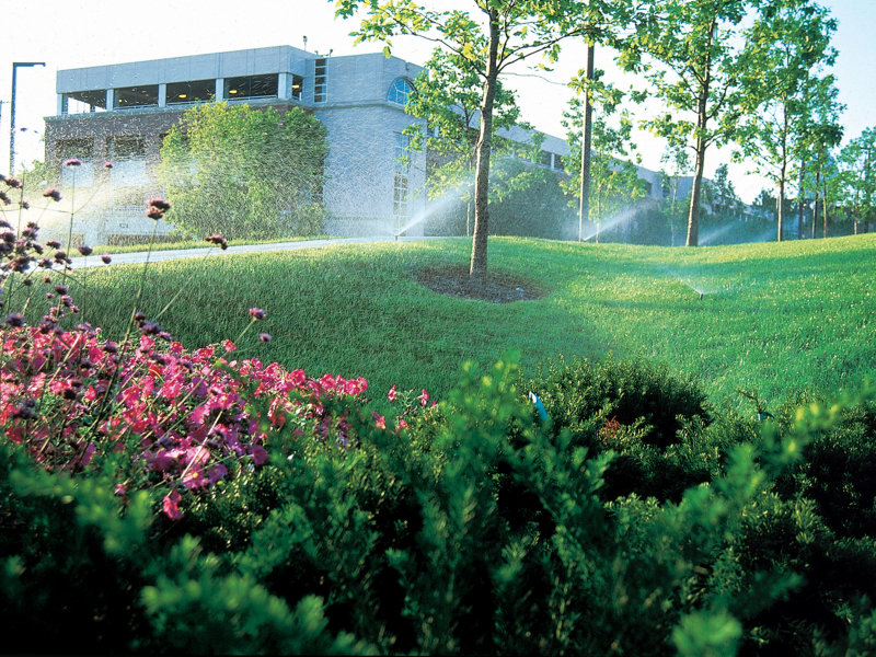 Irrigando Jardins Verticais e Telhados Verdes