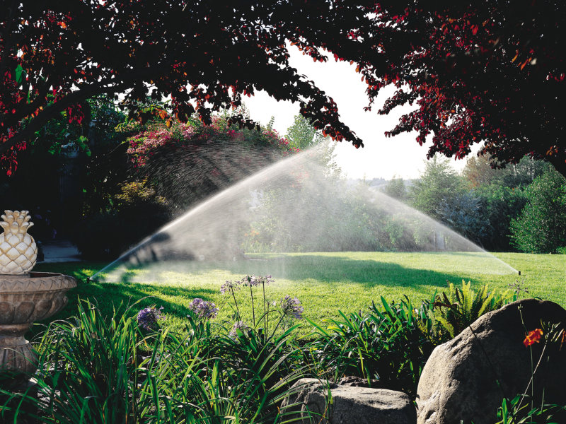 Tipos de irrigação existentes para jardins residenciais