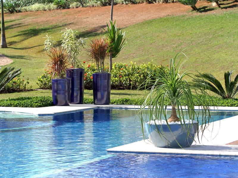 Conheça mais sobre a Vitrificado Brasil que fabrica vasos cerâmicos com acabamento vitrificado